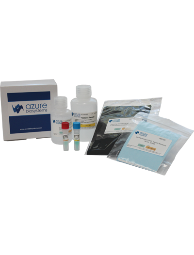 AzureSpectra Fluorescent Western Blotting Kits