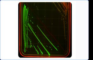 Bacterial Plate Imaging